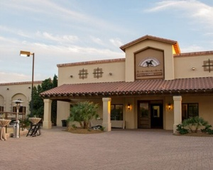 Sahara Scottsdale - Home of World Class Arabian Horses